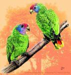 papagaios-de-cara-roxa (Amazona brasiliensis)
